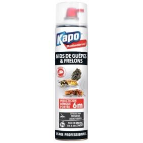 Bombe insecticide spéciale pour nids de guêpes et frelons - 750 ml Kapo