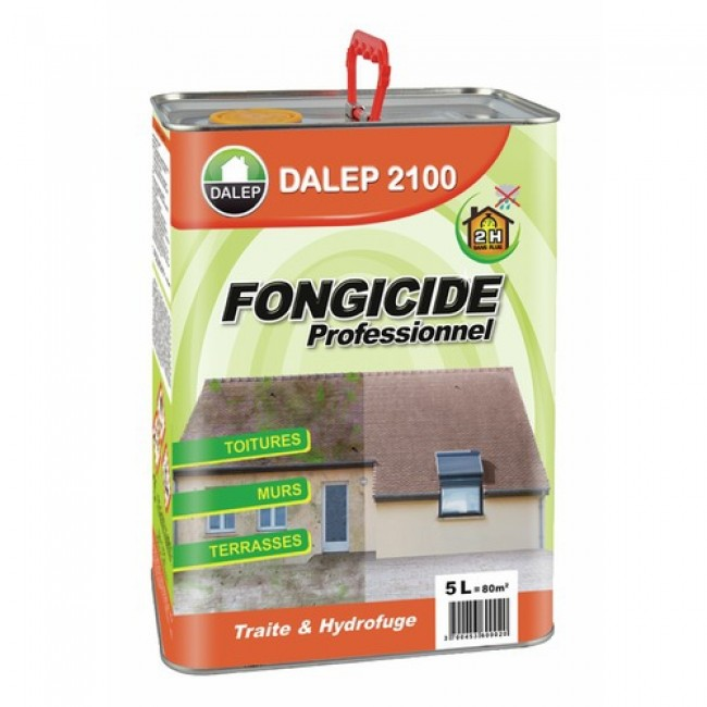 antimousse professionnel et fongicide 5l 80m2 dalep 2100 dalep bricozor. Black Bedroom Furniture Sets. Home Design Ideas