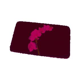 Tapis de bain - 45x75cm - Lanyu - Blanc SPIRELLA