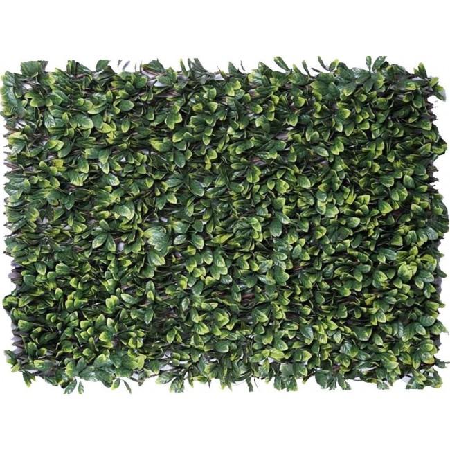 Treillis feuilles de troène - 1m x 2m JET7GARDEN