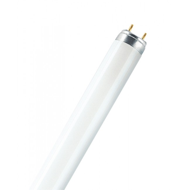 Tube fluorescent 26 mm Lumilux T8 G13 OSRAM