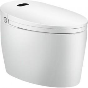 WC Monobloc Luxe Diamond + TopToilet