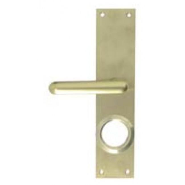 Plaque de porte palière pour serrures 3 points Cavith ISEO