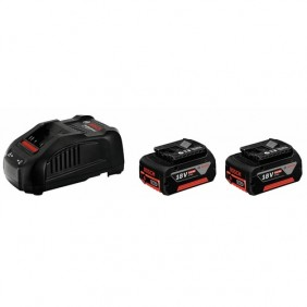 Pack 2 batteries 18V - 6 Ah + chargeur GAL 1880 CV Professional BOSCH