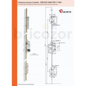 Serrure à larder 5 points  - axe 50 mm - têtière 18 mm - Trilock 5900 VACHETTE